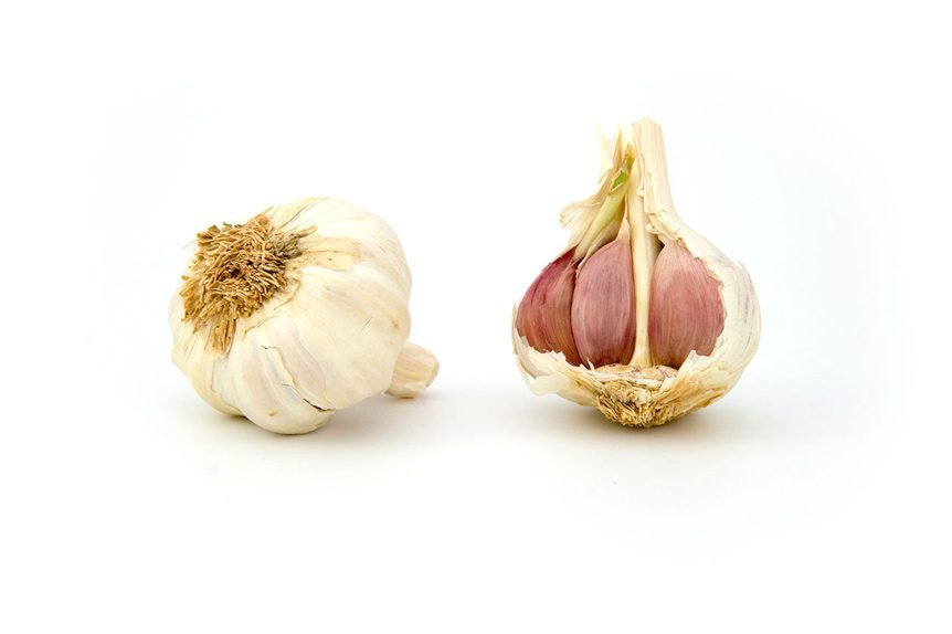 small acorn photo of garlic for fun fact friday week 27 - Eating Garlic Makes Your Amniotic Fluid Smell!