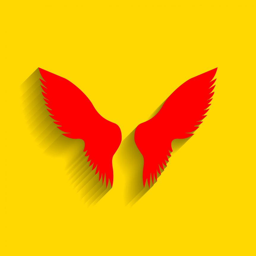 image of red wings ona yellow background