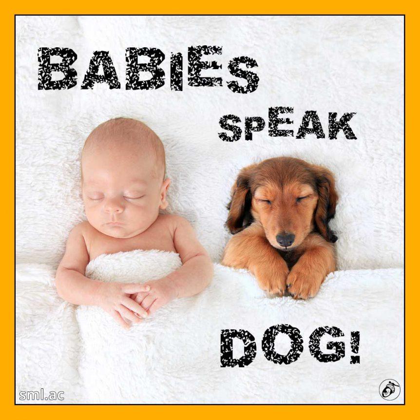 Babies Speak Dog!