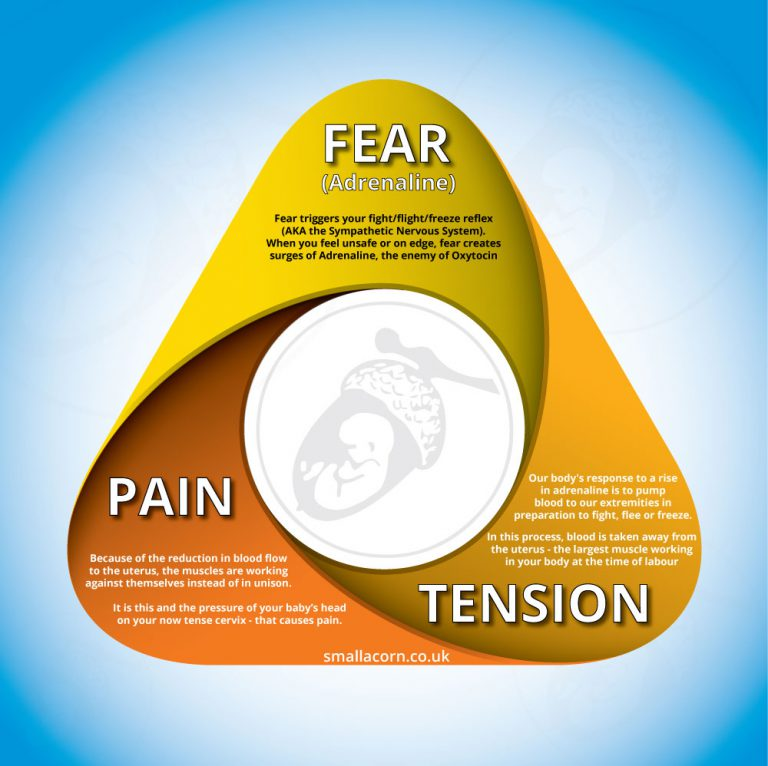Fear-Tension-Pain-Infographic