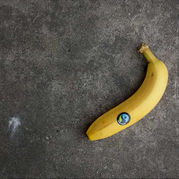 image of a banana with a grey background