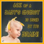 60% of a Baby's Energy Is Used by Its Brain!