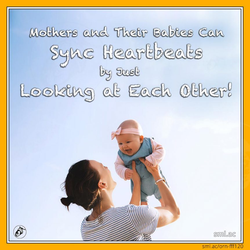 Mothers and Their Babies Can Sync Heartbeats Just by Looking at Each Other!