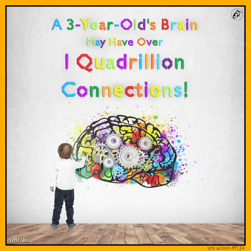 A 3-Year-Old's Brain May Have Over 1 Quadrillion Connections!