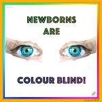 Newborns Are Colour Blind!