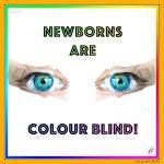 Newborns Are Colour Blind!