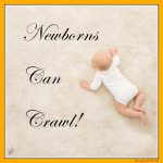 Newborns Can Crawl!