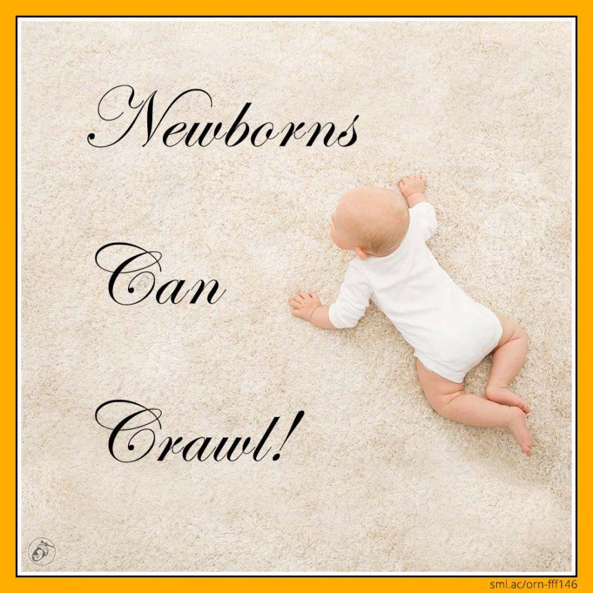 Newborns Can Crawl!