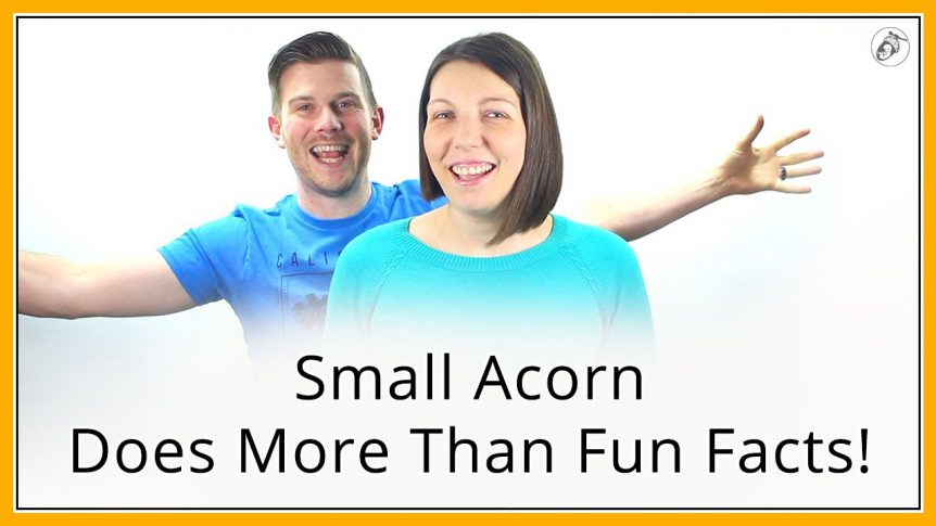 Small Acorn does more than Fun Facts!